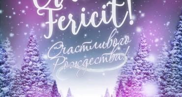 Crăciun Fericit‼️